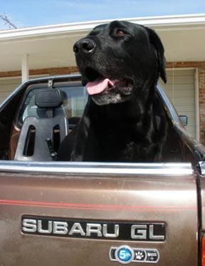 Subaru Badge Of Ownership >> Subaru Badge of Ownership- photos of the icons you can get ...